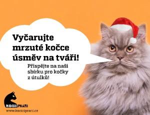Profily pro kočky